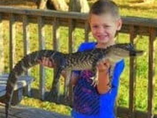 Kid Holding Alligator