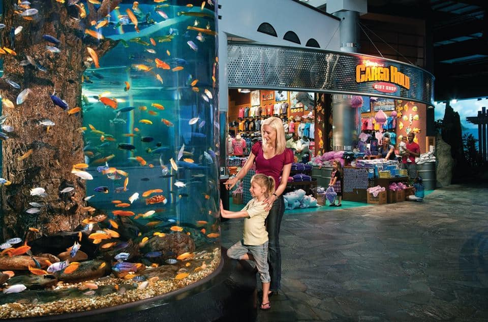 Ripley's aquarium coupons codes