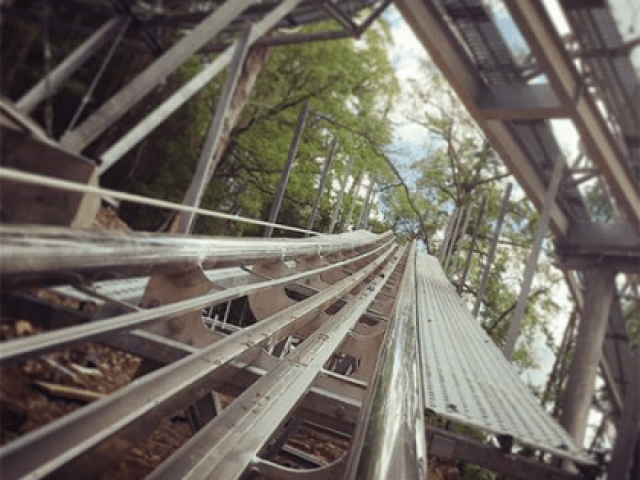 Rowdy Bear Mountain Coaster Coupons