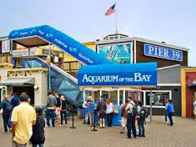 Aquarium of the bay discount coupons