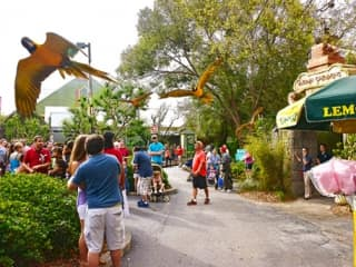 Lowery Park Zoo Coupons