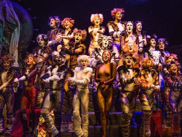 CATS Show New York City Coupons