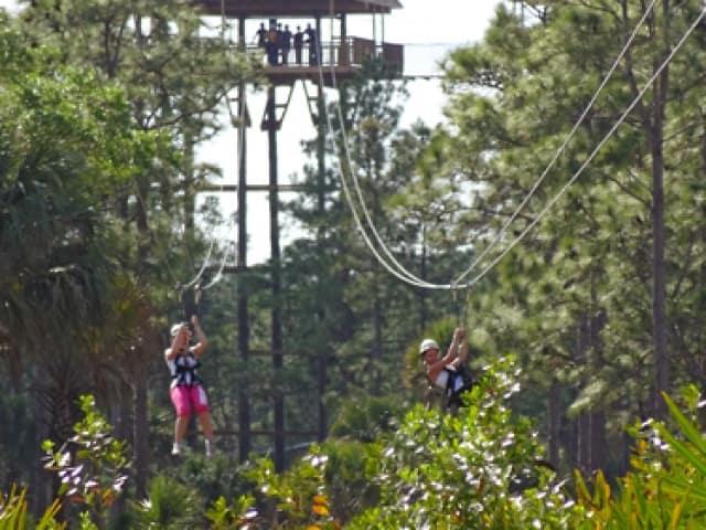 Forever Florida Ziplines Adventures Wild Coupons