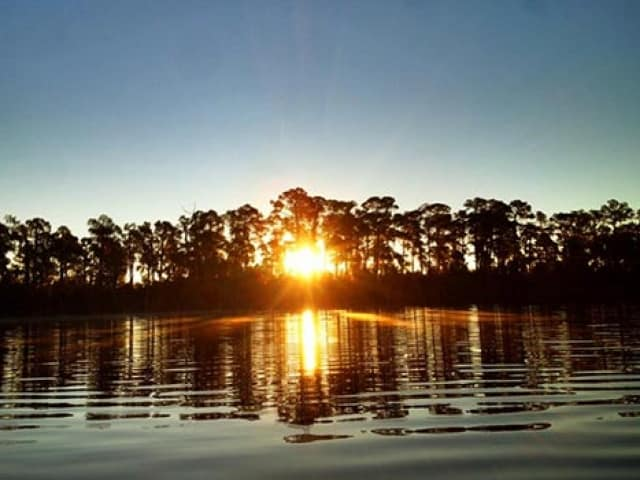 Pontoon Rentals Buena Vista Watersports Coupons