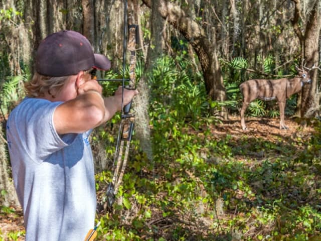 Revolution Off Road Target Archery Experience Coupons