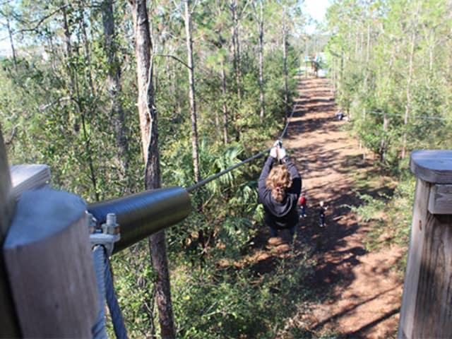 Orlando Tree Trek Adventure Coupons